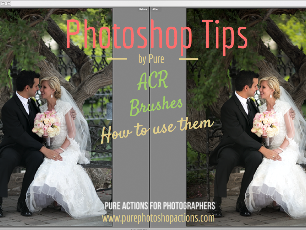 How to use Brushes in ACR